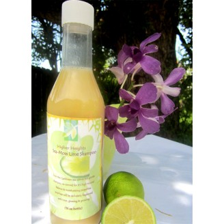 Sea moss lime shampoo